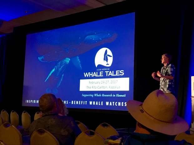 whale-tales-1-1